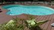 Les piscines en haricot