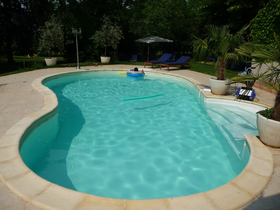 Forme haricot for Piscine haricot
